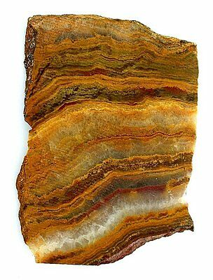 150.5 Gram Banded Brown Red Crazy Lace Agate Mayer Arizona Slab Cab Rough US22