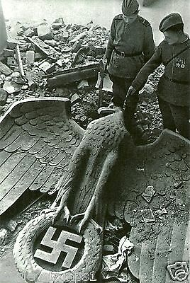 German WW II Photo   **    The Fall Of The Third Reich  **          # 731