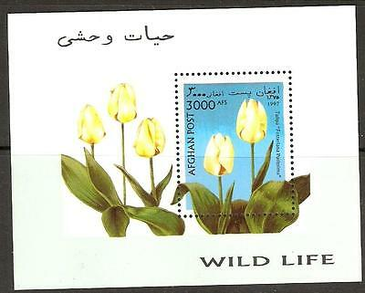 Afghanistan 1997  Flowers / Tulips M/sheet Mnh