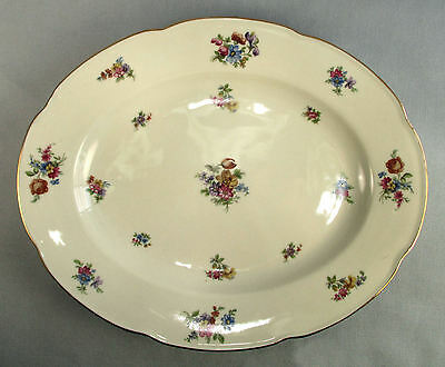 "Colwyn Pattern 12"" Oval Platter Tirschenreuth Fine China Bavaria Discontinued"
