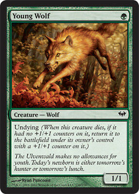 Young Wolf x4 Magic the Gathering 4x Dark Ascension mtg card lot green