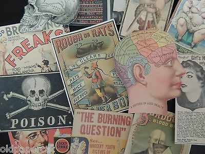 Lot of 12 PRETTY CREEPY Vintage Advertising Die Cuts 4 CRAFTS | FREE SHIP | B12