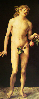 Oil painting Albrecht Durer - Nude naked young man Adam holding fruit standing