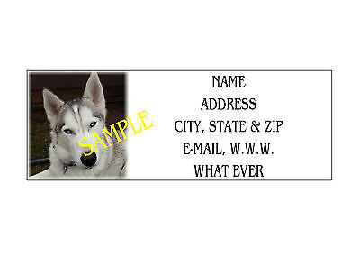 Husky Address Labels Cool!!! #1