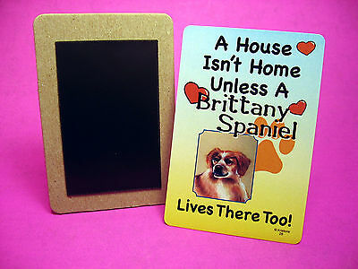 """Brittany Spaniel"" A House Isn't Home - Dog Fridge Magnet - Sku# 28"