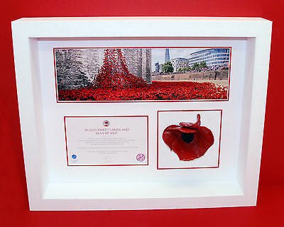 London Poppy Display Frame For Tower of London Ceramic Poppy in White