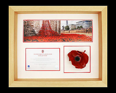 London Poppy Display Frame For Tower of London Ceramic Poppy in Natural Wood