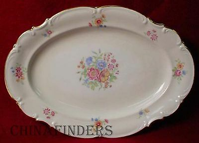"""HUTSCHENREUTHER china 9039 pattern Oval Meat Serving Platter @ 15 1/4"""""""