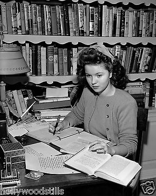 Shirley Temple works in her study in 1944 child movie star 8x10 rare photo