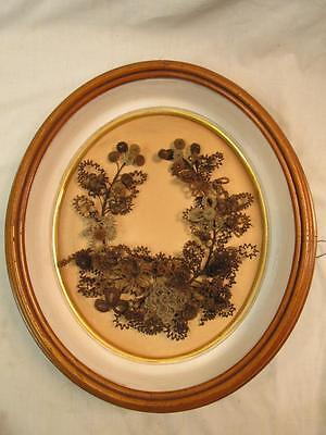 Victorian Mourning Hair Wreath / Mourning Art Oval Walnut Shadow Box Frame