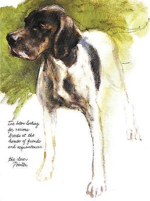 Pointer - Vintage Dog Print - Poortvliet