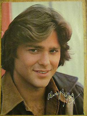 Greg Evigan, BJ and the Bear, Full Page Vintage Pinup, Rex Smith