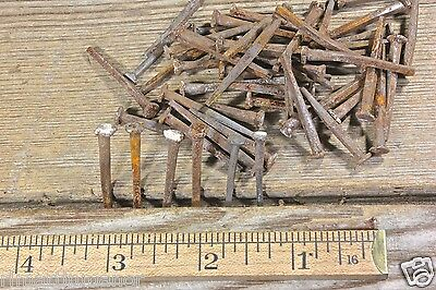 "1 1/4"" NAILS 50 in lot rustic old antique used square head lath vintage 1850's"