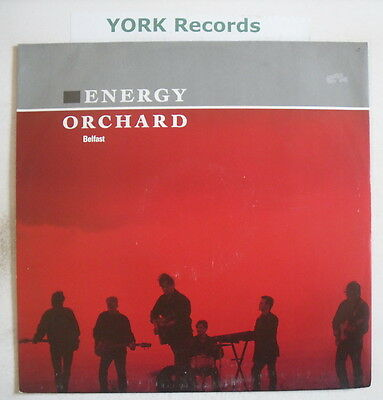 """ENERGY ORCHARD - Belfast - Excellent Con 12"""" Single"""