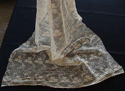 """Antique Vtg Tambour Cotton Tulle Net Lace Embroidered Fabric Panel 52"""" long"""