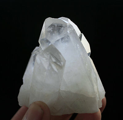 205g AAA+++ Clear Natural Beautiful Green Ghost QUARTZ Crystal Cluster Specimen