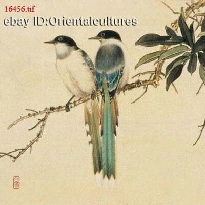 """Chinese 100% Real Natural Silk thread,Hand Embroidery Kits: birds 12"""""""