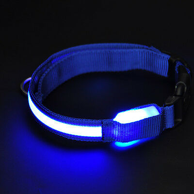 LED Pets Dog Lights Flash Nylon Collar Night Safety Waterproof Adjustable M BLUE