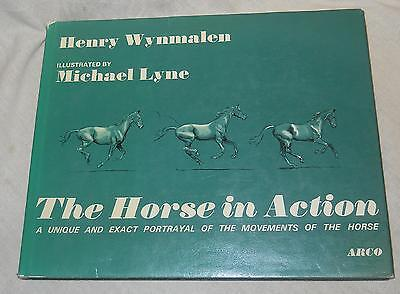 The Horse in Action by Henry Wynmalen  (1973, Hardcover, illustrated)