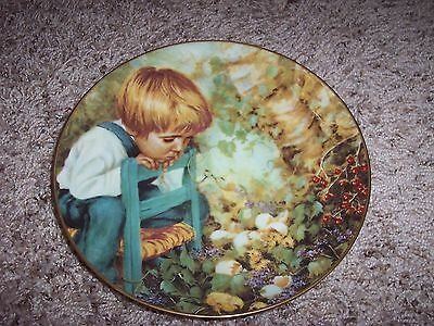 MICHAEL'S MIRACLE (1982 STRATFORD COLLECTORS PLATE) NANCY TURNER - PLATE #4316