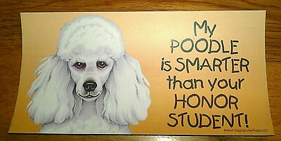 MY POODLE IS SMARTER THAN YOUR HONOR STUDENT!~MAGNET- Poodle Car magnet - BNWT