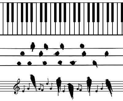 """Musical Piano Keys for Barrettes 1"""" X 4"""" Fused Glass Ceramic Decals 14-CC-383"""
