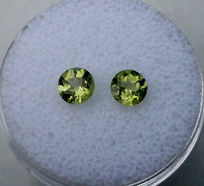 Peridot Round Loose Gem Pair 5mm each