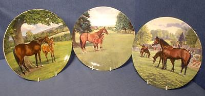 Trio of Plates The Thoroughbred, A Champion is Born & The English Thoroughbred