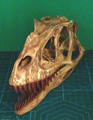 Oldest But Newest Ceratosaurus RESIN DINOSAUR SKULL MODEL COLLECTIBLE
