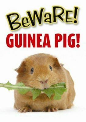 Beware Of the Guinea Pig House Door Wall Sign Garden Or Cage Sign Decoration