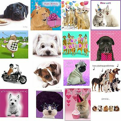 Cute Pets Animals Funny Birthday Thank You Blank Greeting Cards All Occasions