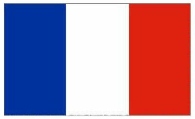 FRANCE FRENCH NATIONAL FLAG FOOTBALL RUGBY OLYMPIC GAMES FANS SUPPORTER 5x3FT