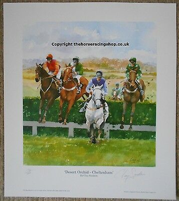 Desert Orchid by Clay Saunders Fine Art LE Horse Racing Picture