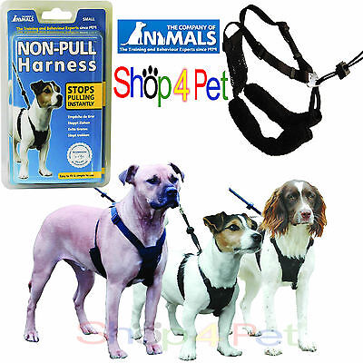 COMPANY of ANIMALS NON-PULL DOG HARNESS Stops Pulling, 3 SIZES Small-Med-Large