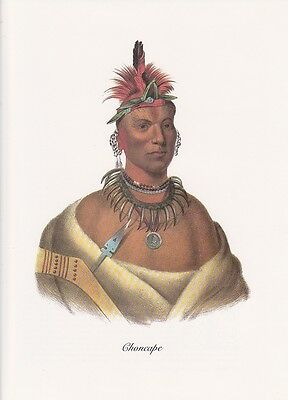 """1972 Vintage Full Color Art Plate /""""MUSKOGEE CHIEF/"""" NATIVE AM INDIAN Lithograph"""