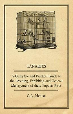 BORDER CANARY SHOW Cage #show 7 Built For Show Standard - $75 00