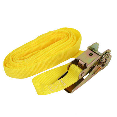 5M x 2.5cm Beekeepers Ratchet Hive Strap Beekeeping Tool Equipment