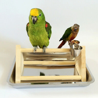 Wooden PLAY STAND Perch gym parrot bird cages toy Conure Cockatiels Parakeet