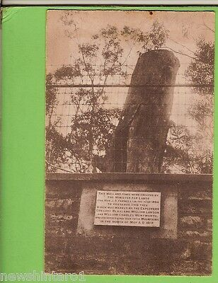 #D.    Postcard -  The Marked Tree, Katoomba, Blue Mountains, Nsw