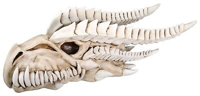 Large Dragon Fossil Skull Skeleton Head Figurine Statue 14.5 inch Long Sculpture