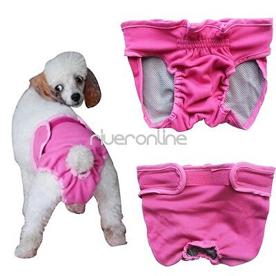 Dog Puppy Diaper Female Small Large Dog Breeds Pants Sanitary Panties Underwear