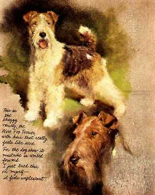 Wire Fox Terrier - Vintage Dog Art Print - Poortvliet