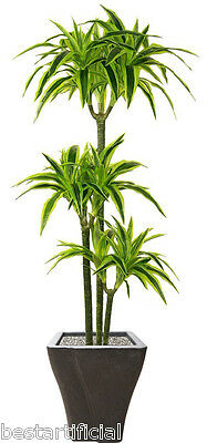 Best Artificial 5ft 150cm Dracaena Dragon Tree Plant Tropical Conservatory