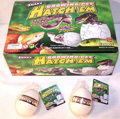 2 SNAKE HATCHING EGGS reptiles growing magic tricks