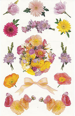 Mrs. Grossman's Giant Stickers - Photo Daisy Clusters - Daisies & Stem- 2 Strips