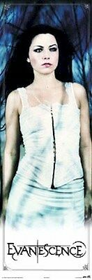 EVANESCENCE POSTER ~ AMY LEE DOOR SIZE 21x62 Music
