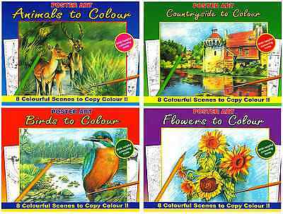 Set 4 Colouring Books Birds Flowers Animals Countryside Paint Pencil Pen 1020New