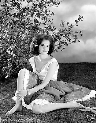 Natalie Wood posing barefoot in a meadow 8x10 rare photo