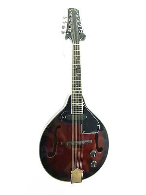 Lucky Penny LPM50E Acoustic/Electric 'A' Style Mandolin in a Redburst Finish