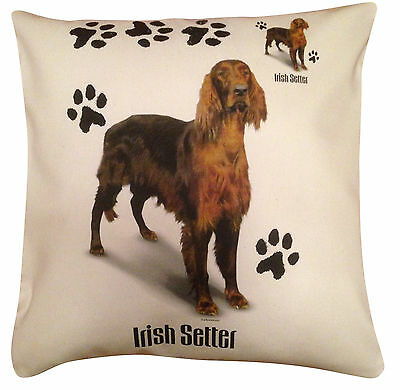 Irish Setter Red Paws Cotton Cushion Cover - Cream or White Cover - Gift Item